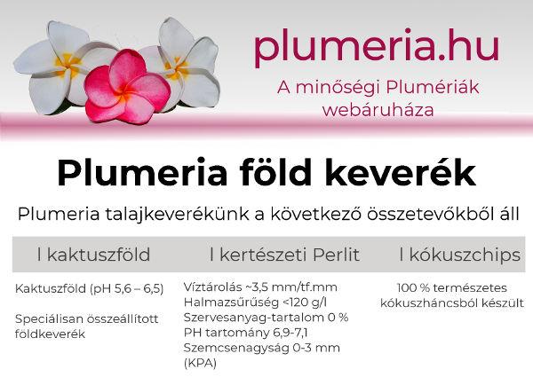 Plumeria föld