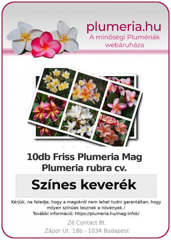 """Plumeria mag """"Színes keverék"""""""