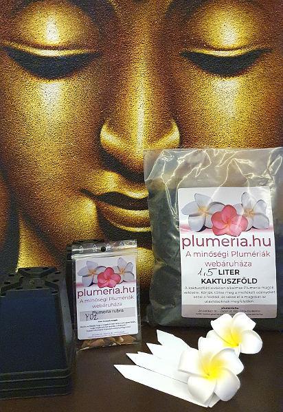 Plumeria mag kezdö csomag
