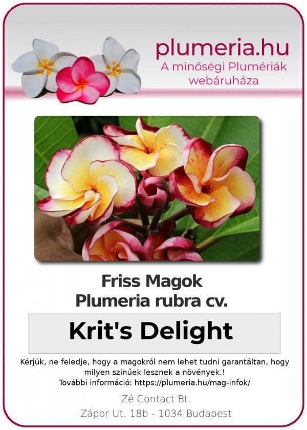 """Plumeria rubra """"Krit's Delight"""""""
