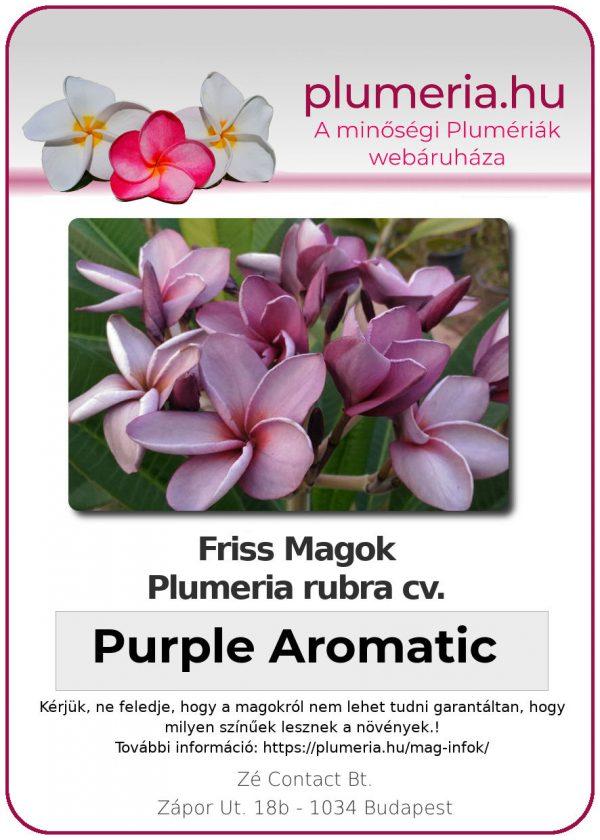"Plumeria rubra ""Purple Aromatic"""