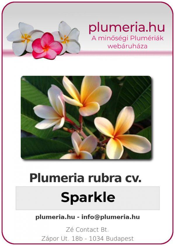 """Plumeria rubra """"Sparkle"""""""
