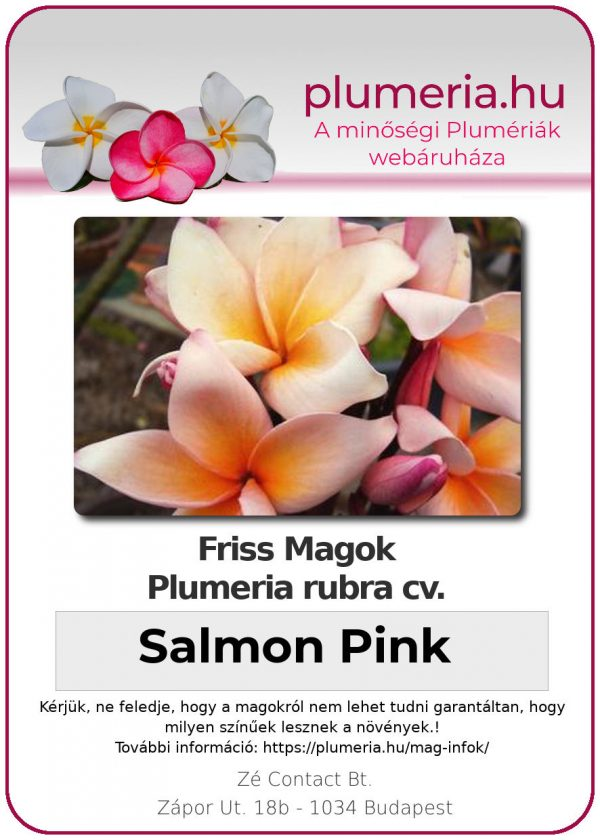 "Plumeria rubra ""Salmon Pink"""