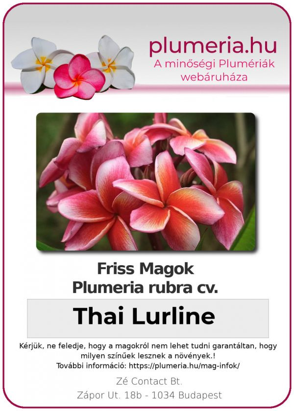 "Plumeria rubra ""Thai Lurline"""